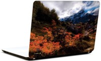 Pics And You Shades Of Nature 11 3M/Avery Vinyl Laptop Decal (Laptops And MacBooks)