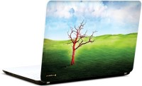 Pics And You Nature Animated 3M/Avery Vinyl Laptop Decal (Laptops And MacBooks)