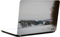 Pics And You Nature Themed 423 3M/Avery Vinyl Laptop Decal (Laptops And MacBooks)