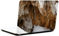 Pics And You Nature Themed 545 3M/Avery Vinyl Laptop Decal (Laptops And MacBooks)