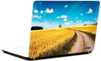 Pics And You Bloom And Blossom 20 3M/Avery Vinyl Laptop Decal (Laptops And MacBooks)