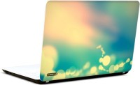 Pics And You Amazing Nature 3 3M/Avery Vinyl Laptop Decal (Laptops And MacBooks)