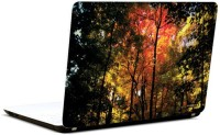 Pics And You Shades Of Nature 12 3M/Avery Vinyl Laptop Decal (Laptops And MacBooks)