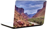 Pics And You Nature Themed 595 3M/Avery Vinyl Laptop Decal (Laptops And MacBooks)
