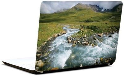 Pics And You Green And Gorgeous 13 3M/Avery Vinyl Laptop Decal (Laptops And MacBooks)