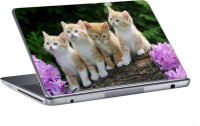 AV Styles Four Cute Cats Skin Vinyl Laptop Decal (All Laptops)