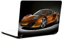 Pics And You Car017 Vinyl Laptop Decal (Laptops And Macbooks)