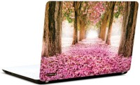 Pics And You Love Pathway Vinyl Laptop Decal (Laptops And Macbooks)