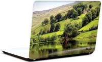 Pics And You Green And Gorgeous 14 3M/Avery Vinyl Laptop Decal (Laptops And MacBooks)