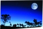 Magickrafts Full Moon