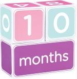 Pearhead Learning & Educational Toys Pearhead Milestone Block Set