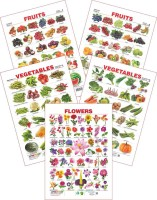 Spectrum Set Of 5 Educational Wall Charts (Assorted Fruits 1, Assorted Fruits 2, Vegetables 1, Vegetables 2 & Flowers) (Multicolor)