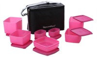 Signoraware Picnic Lunch Box With Bag 7 Containers Lunch Box (3250 Ml)