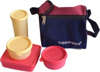 Tupperware Tupperware Best 415 4 Containers Lunch Box (970 Ml)