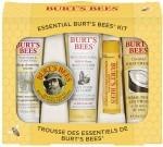 Burt's Bees Makeup Kits Burt's Bees Everyday Beauty Kit