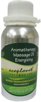 Ecoplanet Aromatherapy Massage Oil-Energizing (100 Ml)