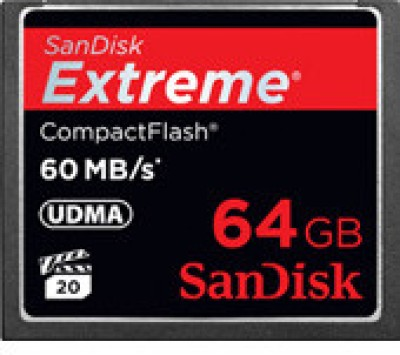 Buy SanDisk Compact Flash 64 GB: Memory Card