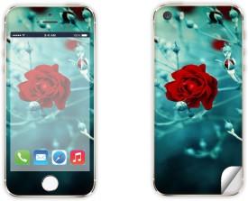 Skintice SKIN14017 Apple iPhone 5 Mobile Skin