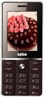 Spice Boss Chocolate M 5373