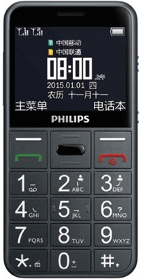 Philips E 310 Mobile Phone (Grey)