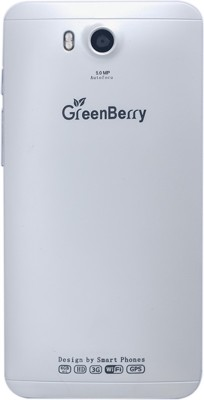 GreenBerry Passport (White, 8 GB)