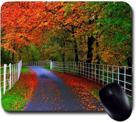 Awwsme Roads Full Of Flowers Mousepad