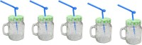 Blue Birds Multidrink Straw Jar Glass Mug (500 Ml, Pack Of 5)