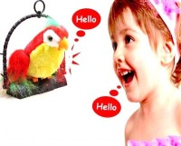 AndAlso Talking Parrot: Musical Toy