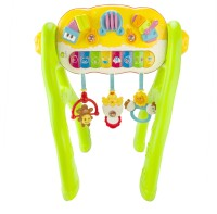 Mitashi Multi Activity Baby Trainer (Multicolor)