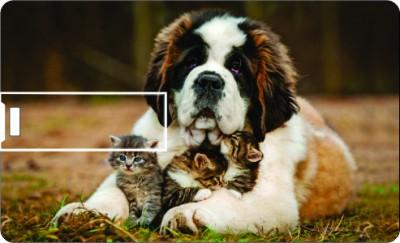 Printland Credit Card Cute Dog