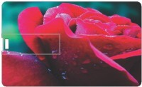 Printland 16GB Sparkle 16 GB  Pen Drive (Multicolor)