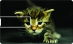 Printland Credit Card Cute Kitty