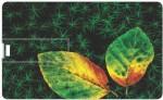 via flowers llp 8GB Greenery VC88821