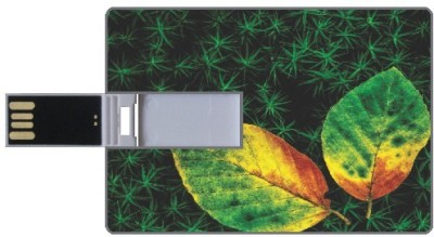 Via Flowers Llp 16GB Greenery VC163031 16 GB  Pen Drive (Multicolor)