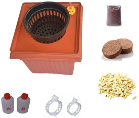 GZ Green Hydroponic Tomato kit with Water level indicator Plant Container