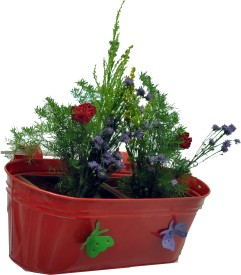 First Smart Deal Plant Container