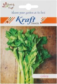 Kraft Seeds Celery Vegetable (Pack Of 2) Seed