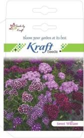 Kraft Seeds Sweet William Flower Seed