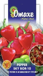 CHILLI PEPPER SKY BOR 10 50 SEEDS PACK BY OMAXE