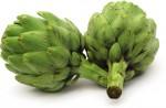 E plant Green Vegetable