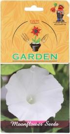 Gate Garden Moonflower White Flower Seeds Seed