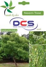 DCS Neem Forest Plant