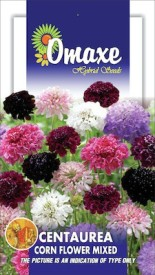 Omaxe CENTAUREA CORN FLOWER MIXED 40 SEEDS PACK Seed