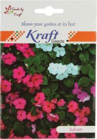 Kraft Seeds Balsam Tom Thumb Mix Seed