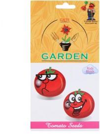 Gate Garden Tomato Seeds Kids Block Seed