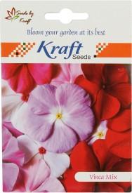 Kraft Seeds Vinca Pacifica Mix Flower (Pack Of 20) Seed