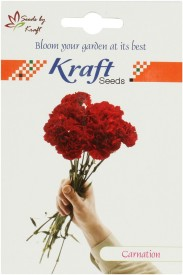 Kraft Seeds Carnation Mix Flower (Pack Of 20) Seed