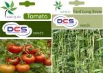 DCS Tomato & Yard Long Beans
