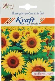 Kraft Seeds Sunflower Dwarf Flower (Pack Of 5) Seed