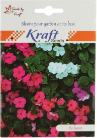 Kraft Seeds Balsam Tom Thumb Mix Flower (Pack Of 20) Seed